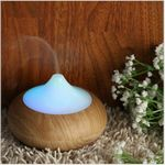 Aroma Diffuser Purifier Humidifier